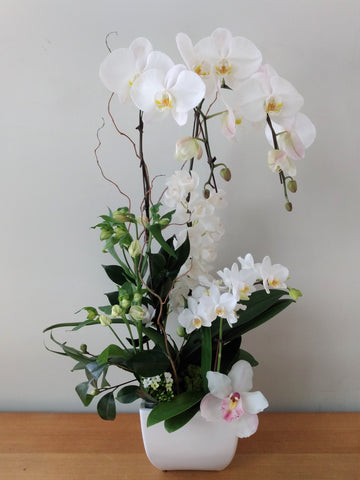 Orchids and flowers - Combination arrangement