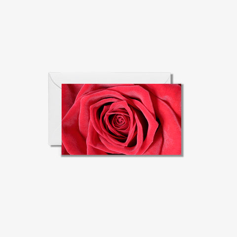 "2.5"" x 3.5"" Card- Red"