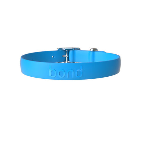 Bond Collar Blueberry, XLarge
