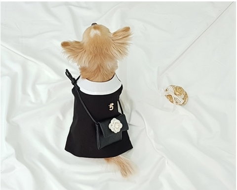 Buyalldog Coco Dress M