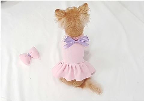 Buyalldog Daisy Dress Purple M