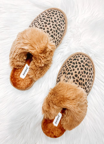 Spotted Slipper