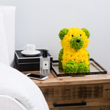 Winnie The Gorgeous Teddy - Only Sydney Delivery (lasts 10-12 days) bear
