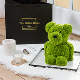 Beary Potter The Gorgeous Teddy - Only Sydney Delivery (lasts 10-12 days)- bear