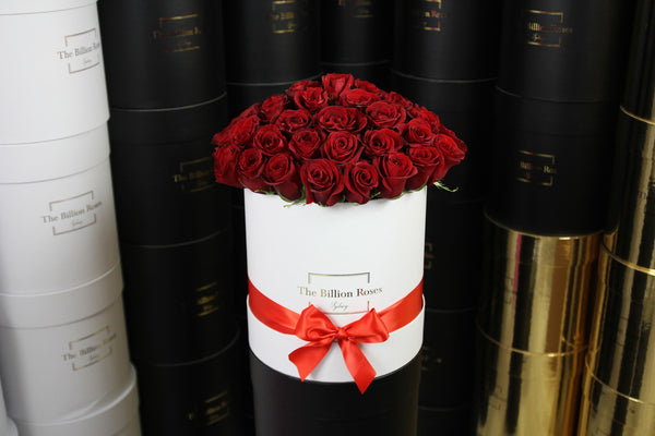GRANDE SÉRIES - 50 STEMS - lasts 1 week - Sydney delivery only