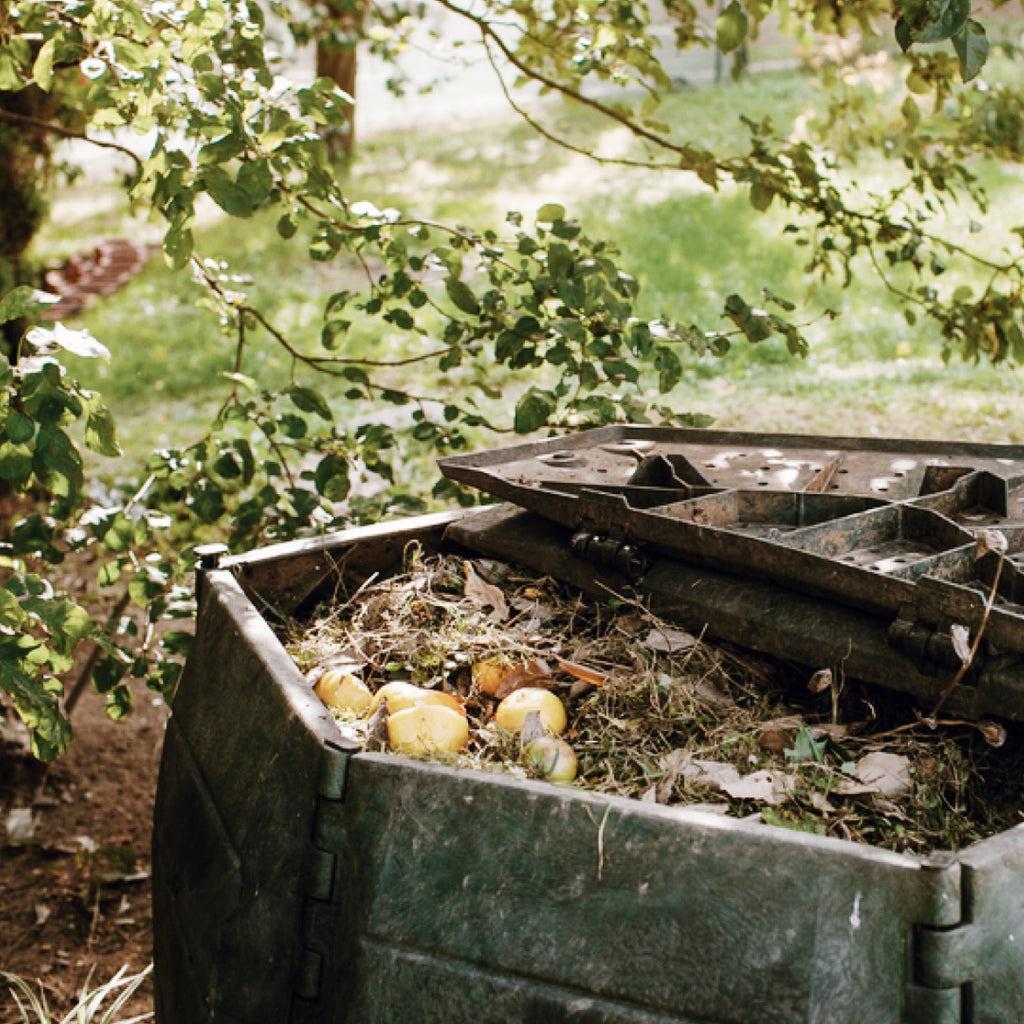 How to Compost your old clothes and live more sustainably