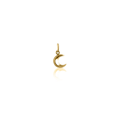 La Luna Rose To The Moon and Back Charm - Gold