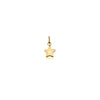 Wish Upon a Star Charm - Gold