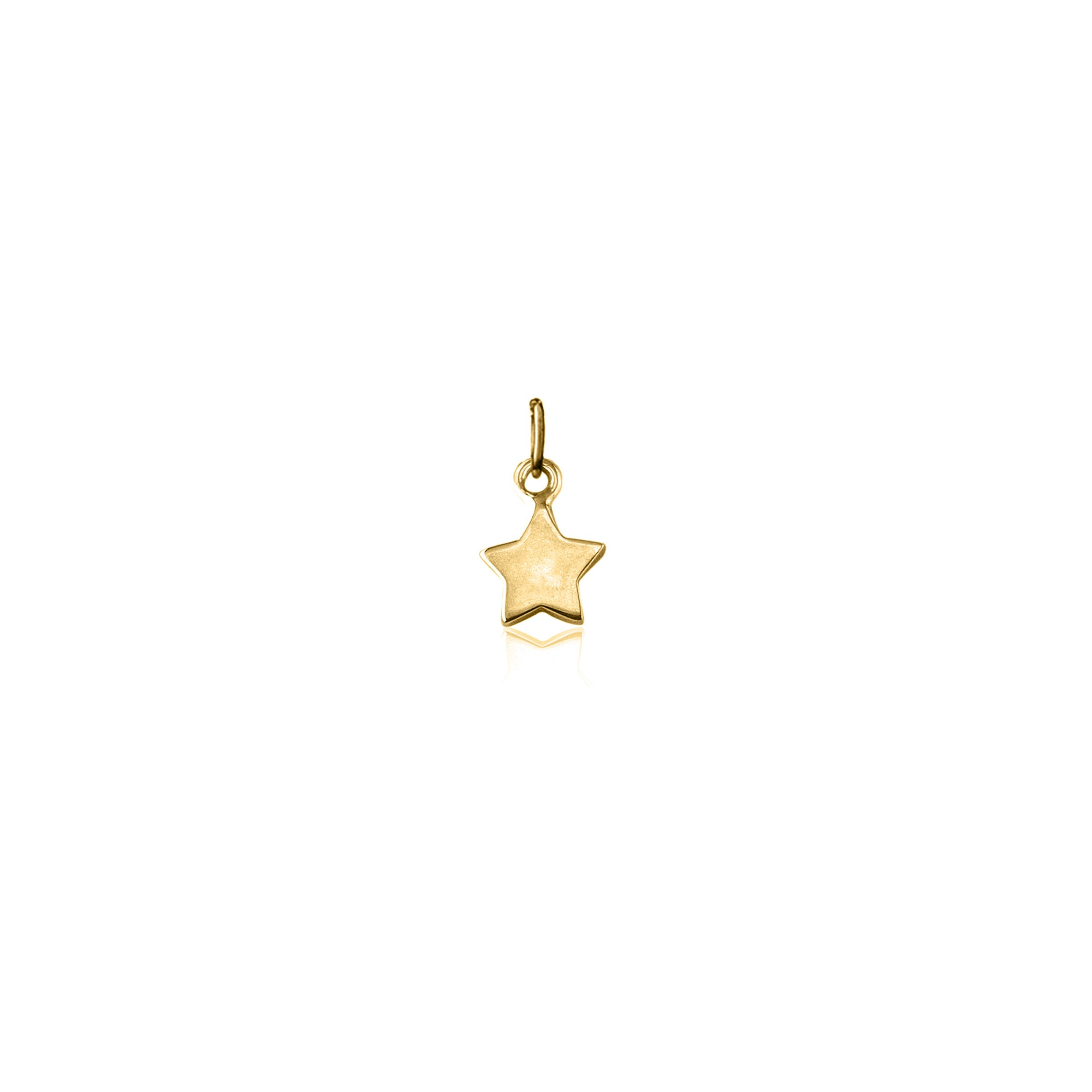 Wish Upon a Star Charm (Gold)