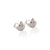 Awestruck in Luck Earrings (Silver)