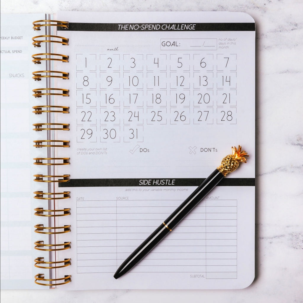 NEW 1 Year Budget Planner