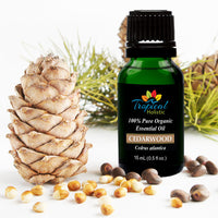 Cedarwood Organic Essential Oil 15ml (1/2 oz), 100% Pure Therapeutic Grade- Tropical-Holistic