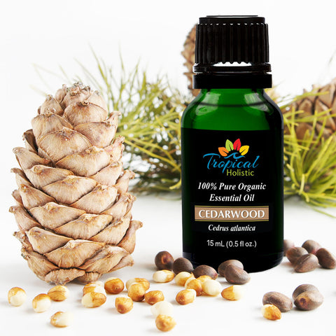 Cedarwood Organic Essential Oil 15ml (1/2 oz), 100% Pure Therapeutic Grade