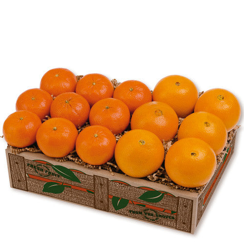 1 Tray of the Tangerine and Navel Combo Gift