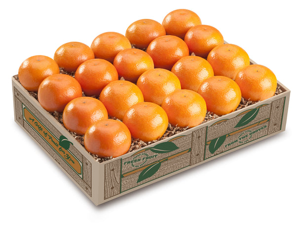 Fall-Glos Tangerine Box