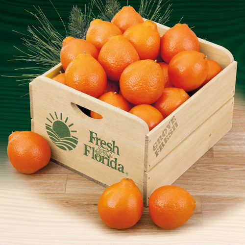 Florida Honeybells Field Crate - Hyatt Fruit Co