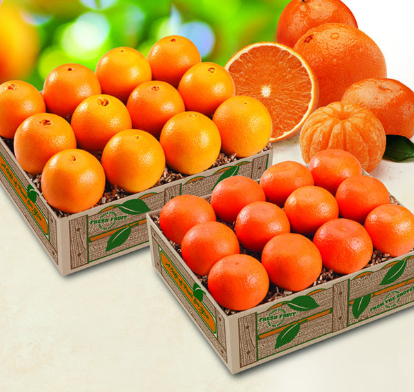 Tangerine and Navel Combo Citrus Gift (2 Trays)