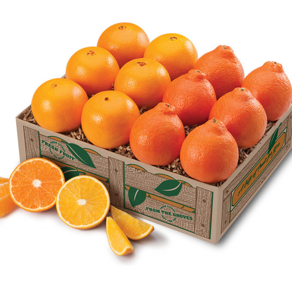 Florida Honeybells and Florida Oranges Navels