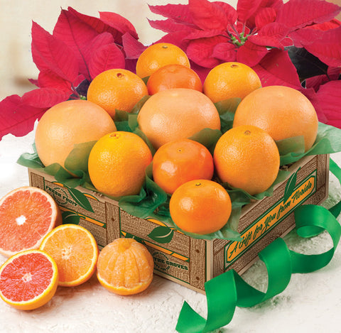 Florida Fruit Gift - Sunkissed Citrus Sampler