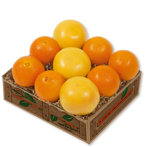 Variety Citrus Taster - Hyatt Fruit Co