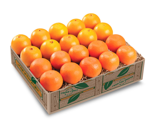 Mandarin and Navel Oranges Combination Gift Box - Hyatt Fruit Company