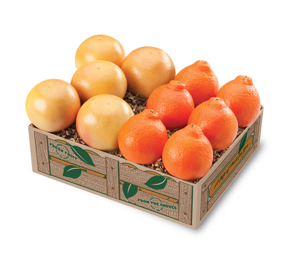 Florida Honeybells with Grapefruit