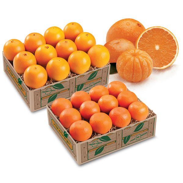 Mandarin Oranges and Golden Navel Oranges from Florida