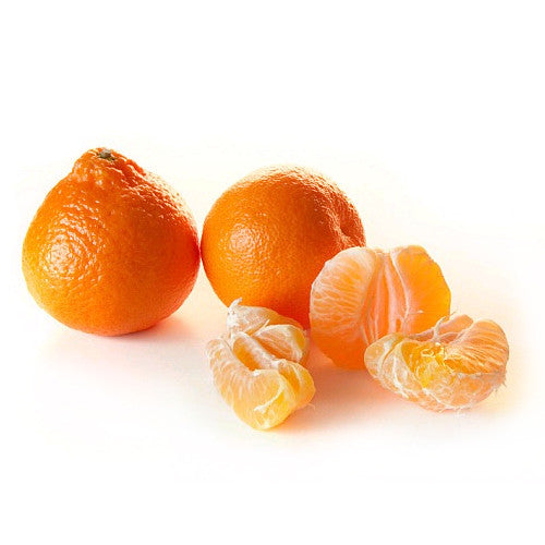 Honeybells from Florida