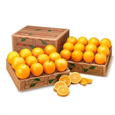 Red and White Duo of Navel Oranges