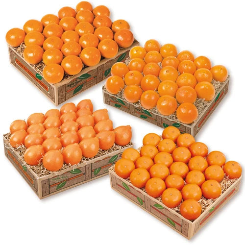 Petite Sweet Oranges Fruit of the Month Club Plan - Hyatt Fruit Company