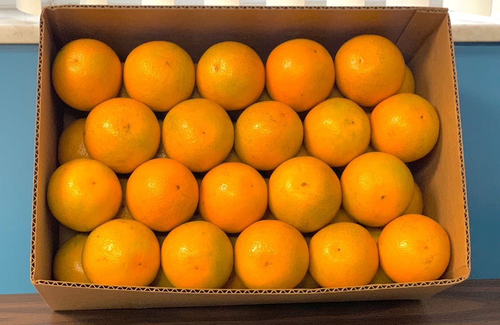 The Season Finale: Box of Valencias
