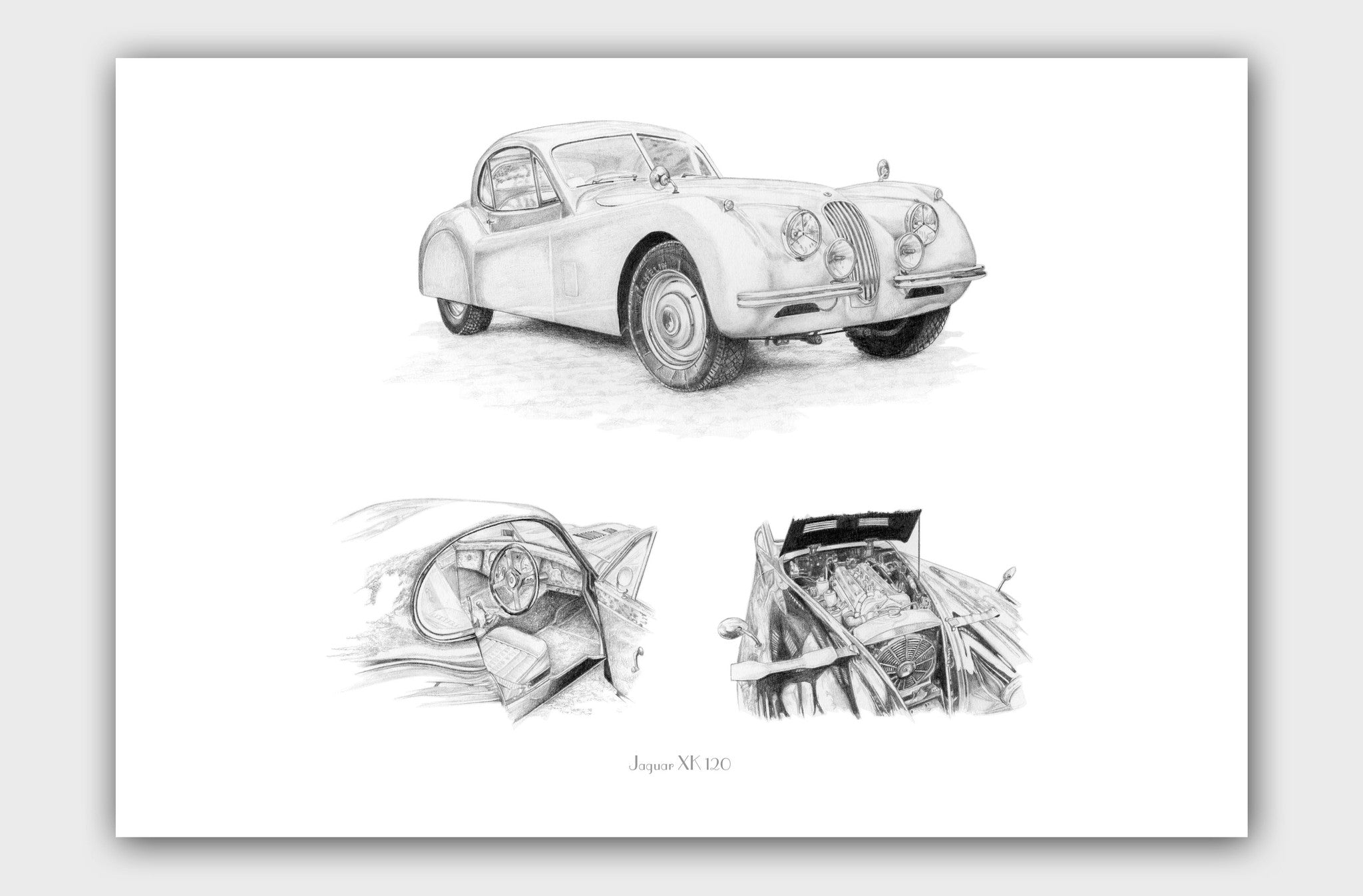 Smooth and Elegant- Jaguar XK 120 (Connoisseur's Edition)