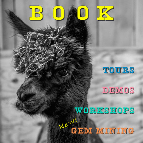 Book TOURS, WALKS, GEM MINING, WORKSHOPS & MORE!