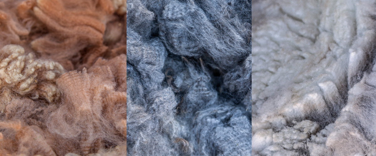 Buck Brook Alpacas | Fiber Production