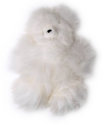 BABY ALPACA TEDDY BEAR White Made in Peru