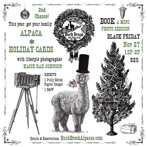 ALPACA HOLIDAY CARDS MINI SESSION w/ Kasie Rae Johnson 1 FULLY EDITED PHOTO (+ 1 B&W) Black Friday, 11/27