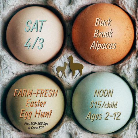 BUCK BROOK'S FARM FRESH EASTER EGG HUNT Ages 2-12 (Single Ticket)