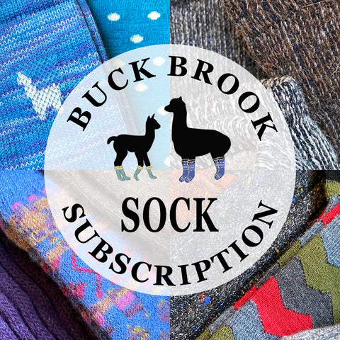 BBA Four Seasons Sock Subscription 4 pair annually