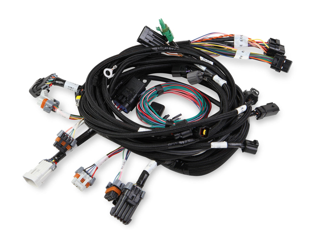 MAIN HARNESS, 99-04 FORD MODULAR 2V & 4V WITH SMART COILS