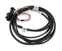 HEMI DBW HARNESS, LATE MOLEX