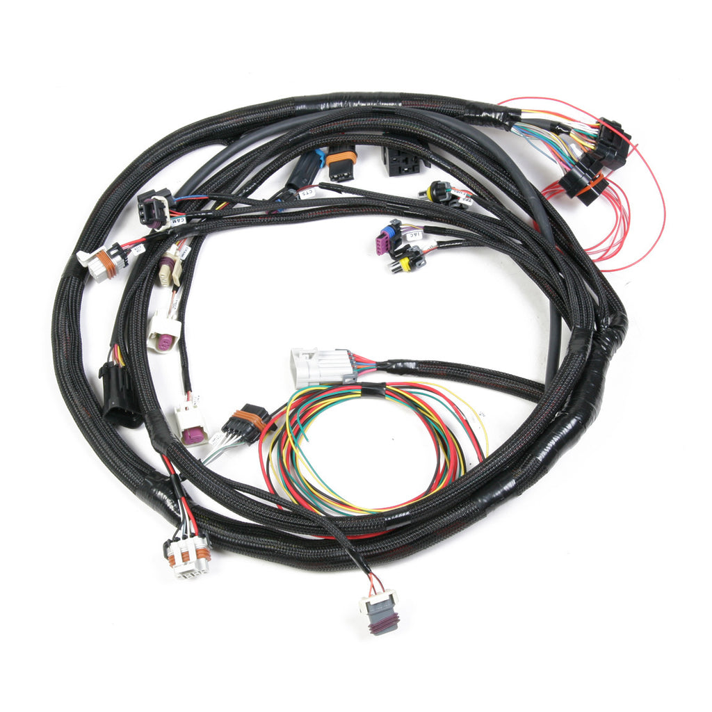 LS2 MAIN HARNESS (58x crank / 4x cam)