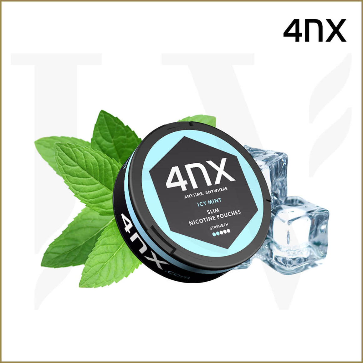 4NX | Pouch Icy Mint