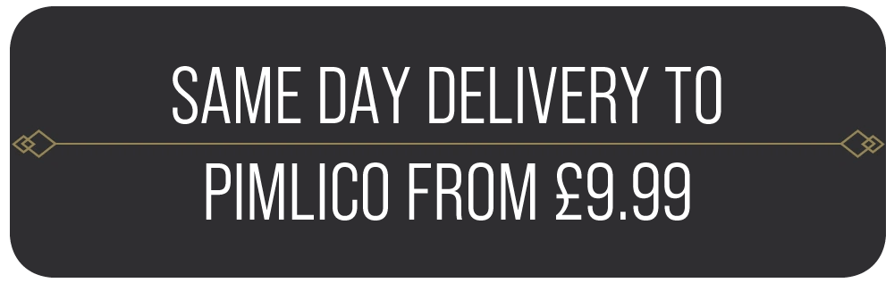 Same Day Vape Shop Delivery To Pimlico From £9.99
