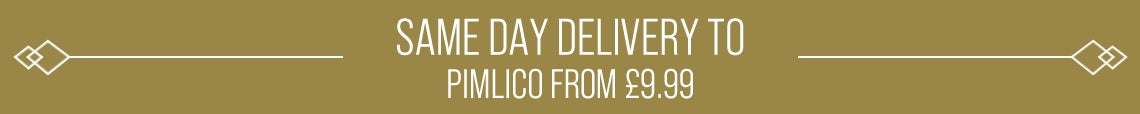 Same Day Delivery Available To Pimlico From £9.99