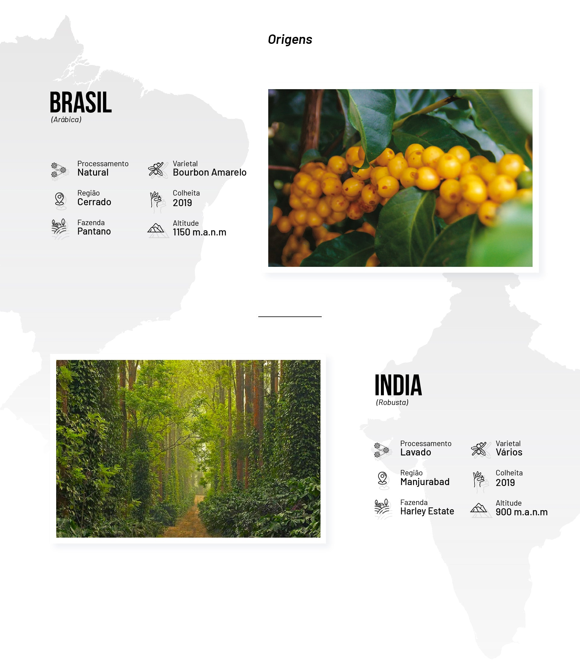 Coffee regions Two Continents Blend