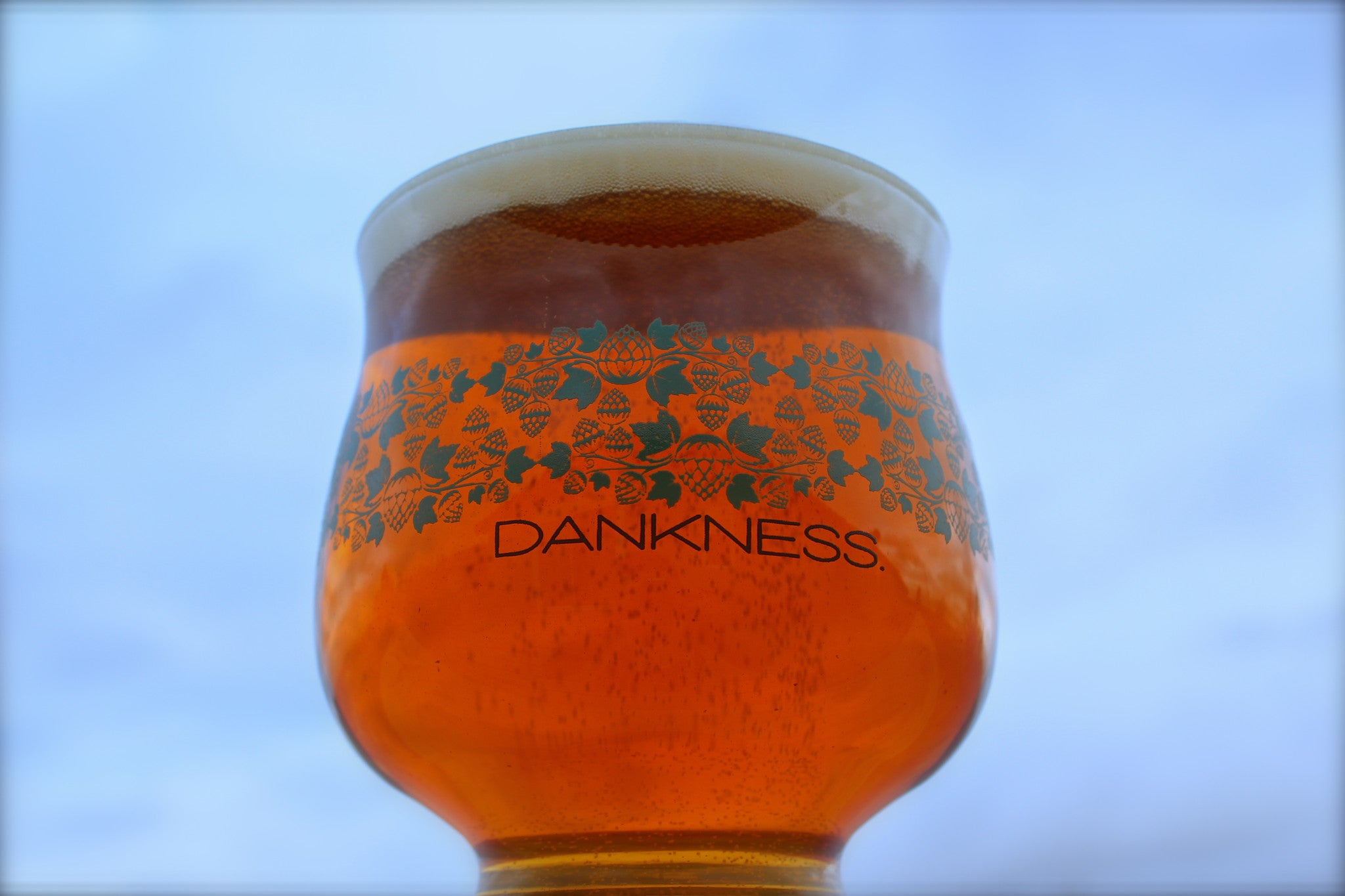 The Dankness Glass | B2