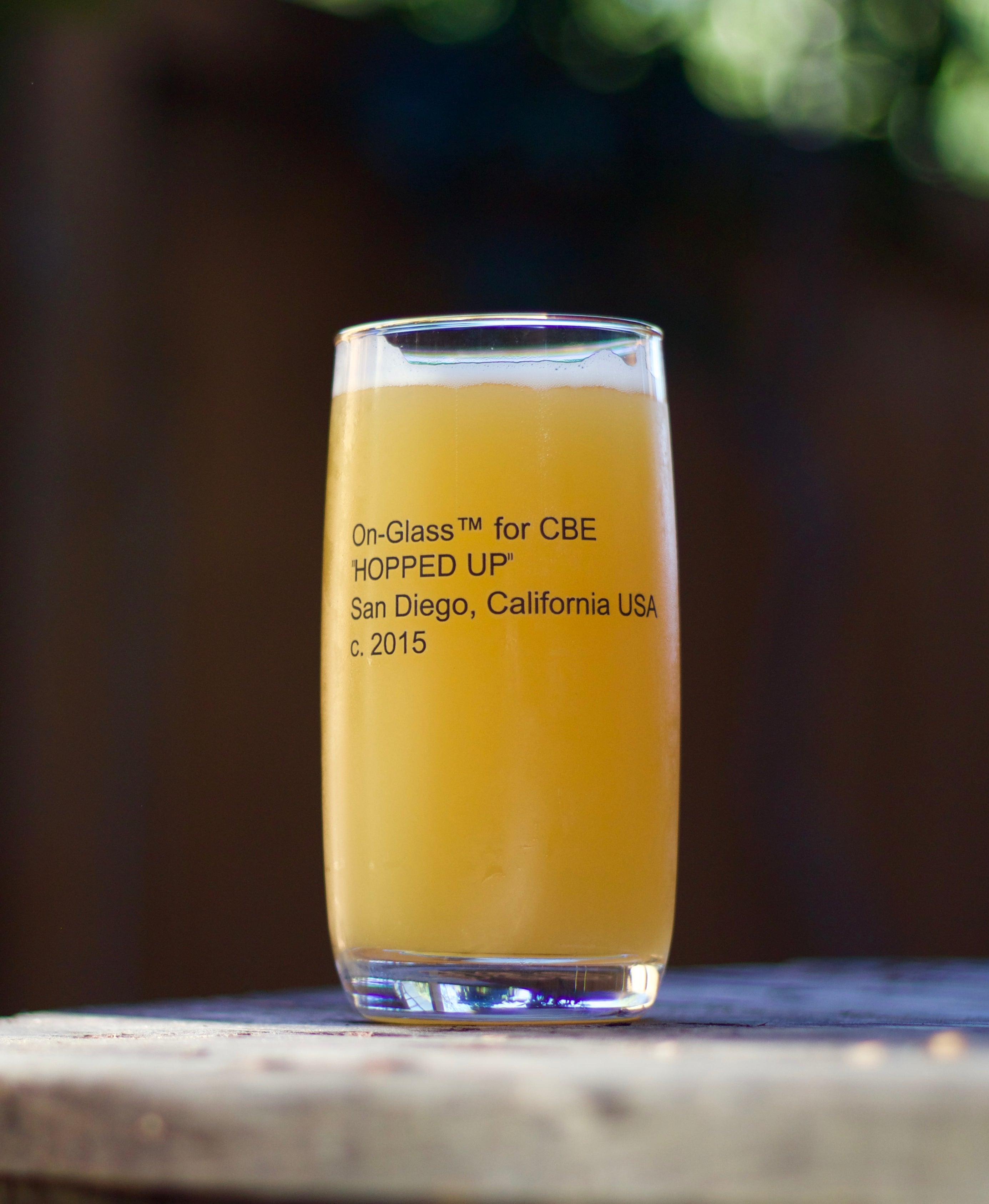 """HOPPED UP"" Glass"