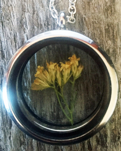 Montana Wheat Living Locket