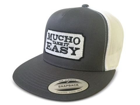 Ticket Hat - Gray Snapback