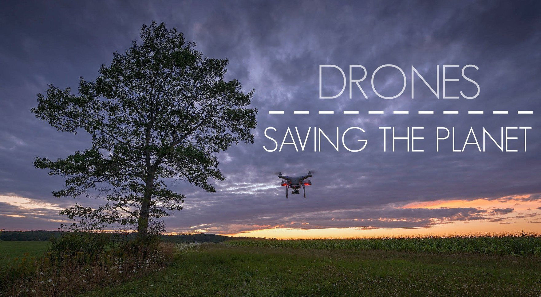 How Drones Can Save Wildlife And Protect The Environment